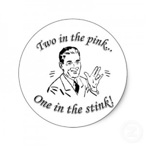 two_in_the_pink_one_in_the_stink_shocker_sticker-p217770691662093767envb3_400